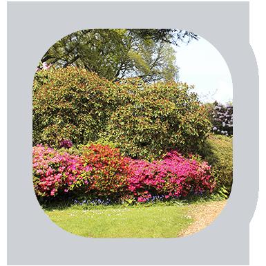 Lawn Pros Of Tallahassee Guarantee